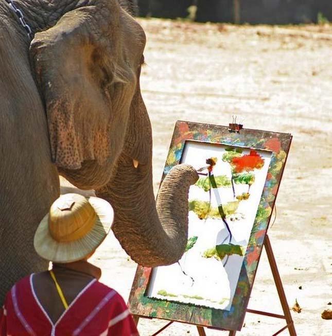 festo-elefantok-15.jpg