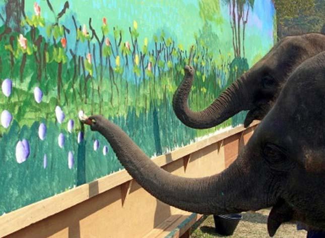 festo-elefantok-9.jpg