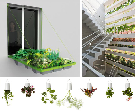 window-planters[1].jpg