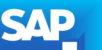 SAP_GR~1 (1).PNG