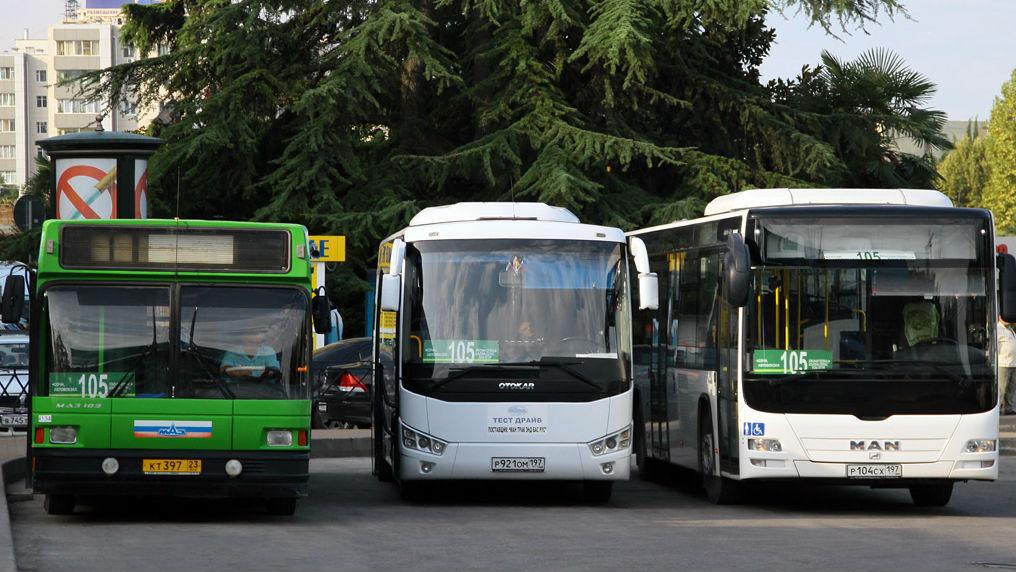 bus-sochi.jpg