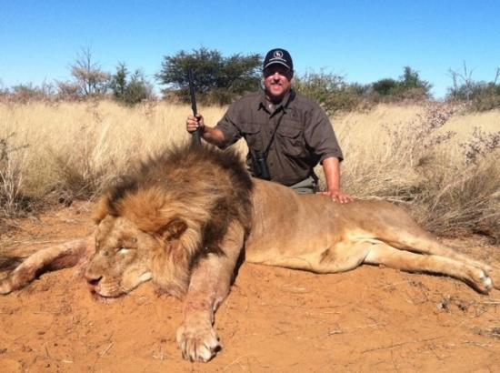 doug-hamric-lion.jpg