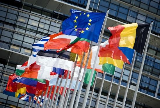 Europeanparliamentflags.jpg