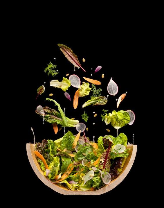 Salad-Cutaway2.jpg