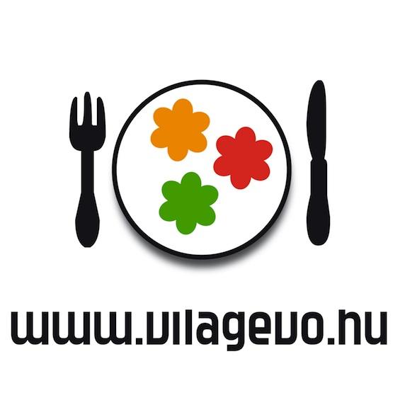 logo_Vilagevo_RGB_565.jpg