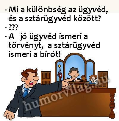 Sztárügyvéd.jpg