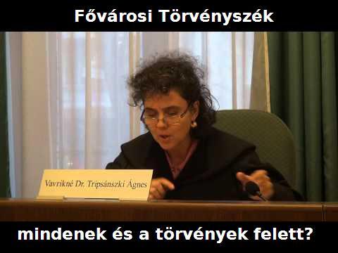 Vavrikné Tripsánszki Ágnes bíró2.JPG