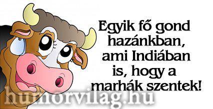 marhák szentek2.jpg