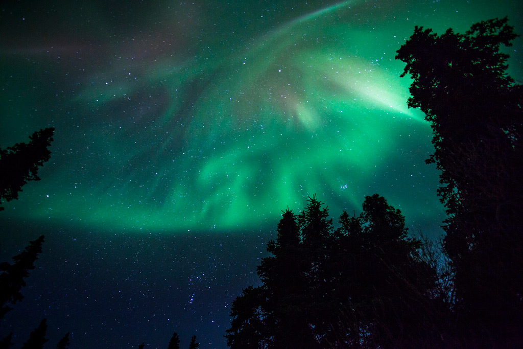 aurora-borealis-denali-national-park.jpg