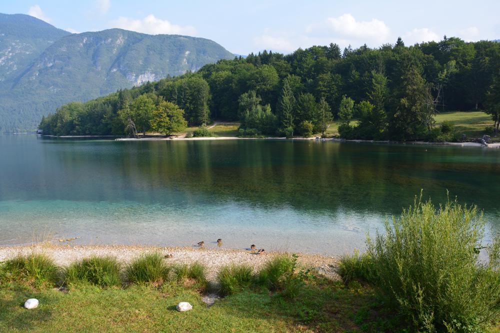 Bohinji-tó (43).jpg