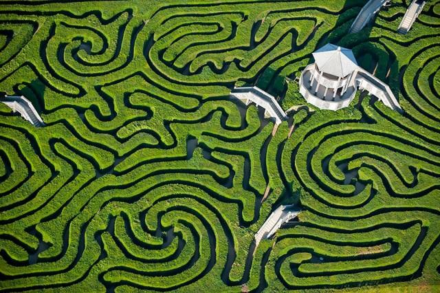 Maze at Longleat.jpg