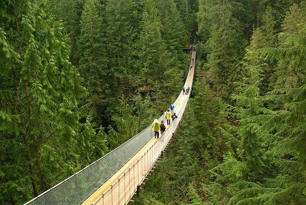 Capilano Suspension Bridge.jpg