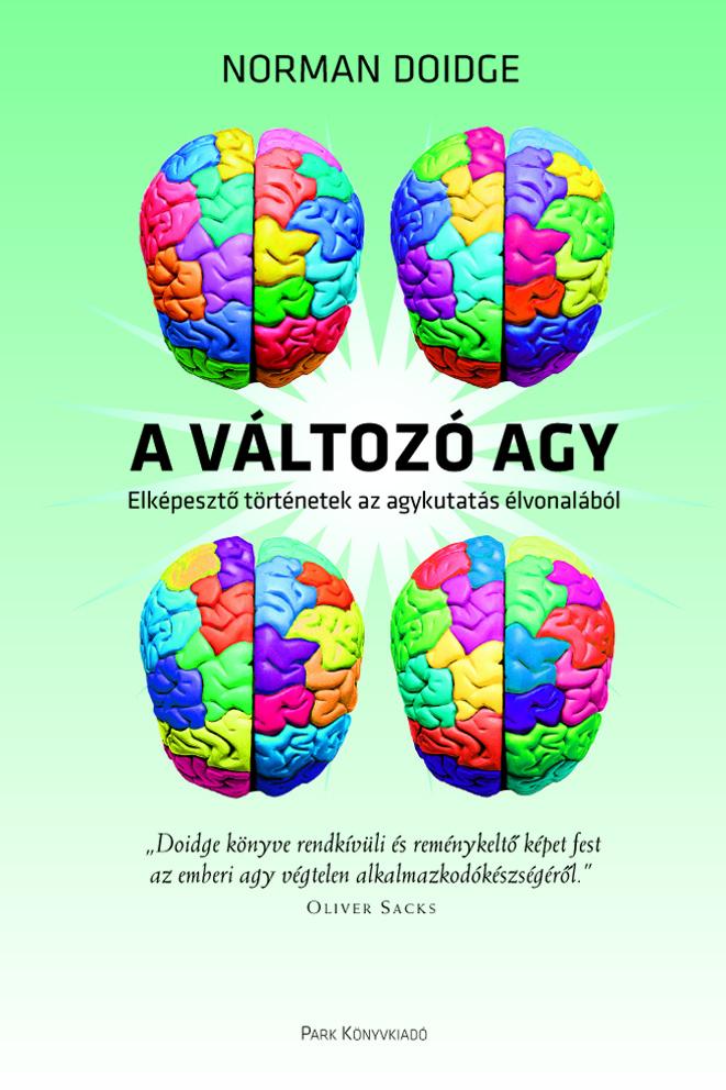 64. A mechanisztikus agy képe
