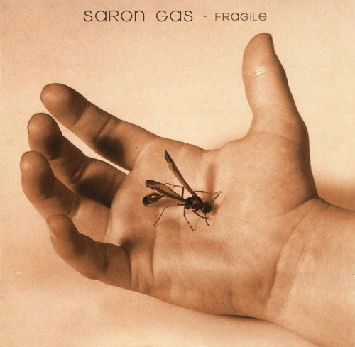 seether saron gas fragile.jpg