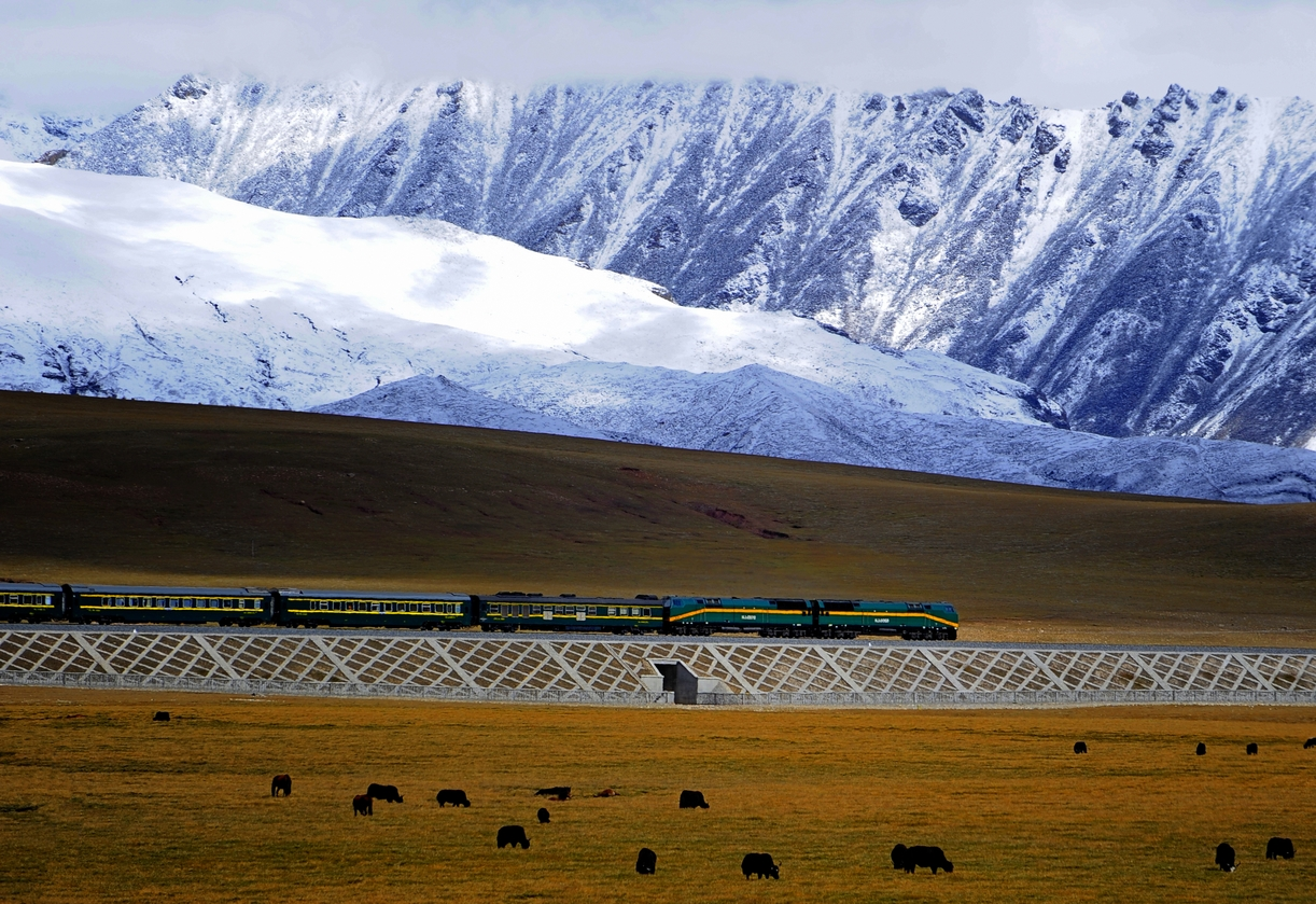 Qingzang_railway_Train_01.jpg