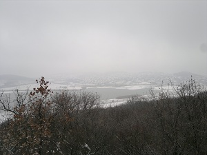 2013-01-13-2173.jpg