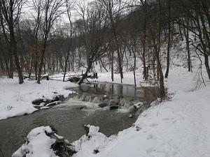 2013-01-26-2227.jpg