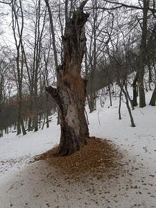 2013-01-26-2229.jpg