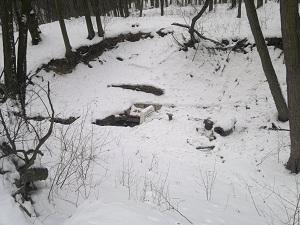 2013-01-26-2247.jpg