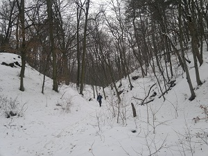 2013-01-26-2250.jpg