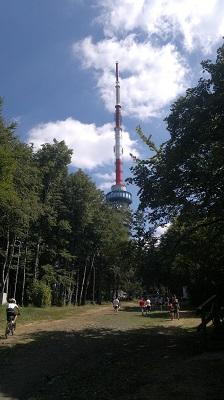 Tisza-tó_2 (12).jpg