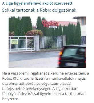 robixtünt.png