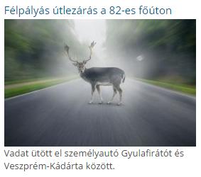 vadbaleset.png