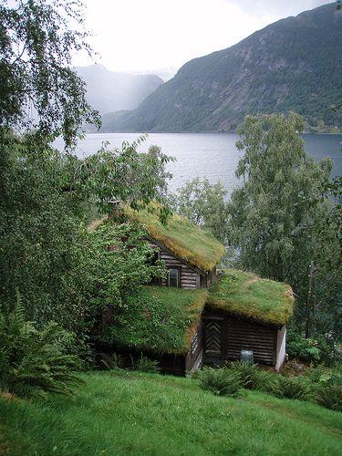 cottage_norveg.jpg