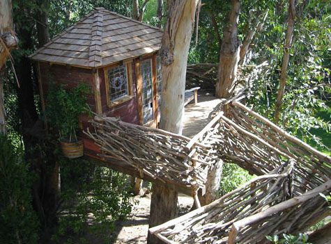 fahaz romero-treehouse2.jpg