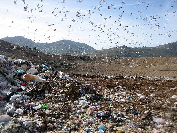 landfill_malagrotta_1.jpg