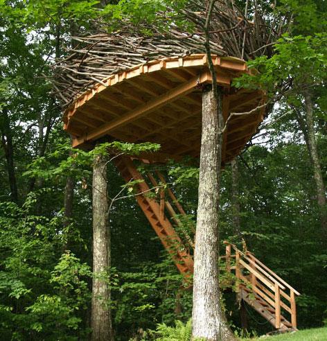 romero-studios-treehouse5.jpg