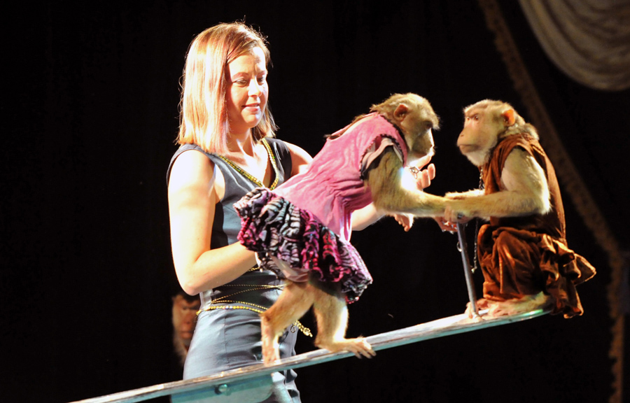 exit-cirkusz-2012fekvo161.jpg